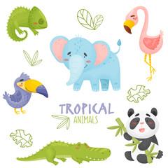 Set of cute cartoon tropical animals in jungle