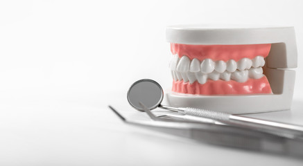 tooth model and dentist tools on white background with copy space