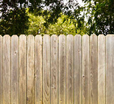 Privacy and security provided by rustic whitewashed wood fence with green shade tree background