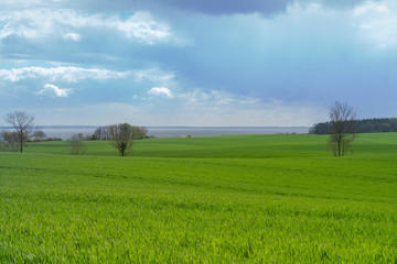Beautiful view over green fields on the German Baltic coast near Groemitz