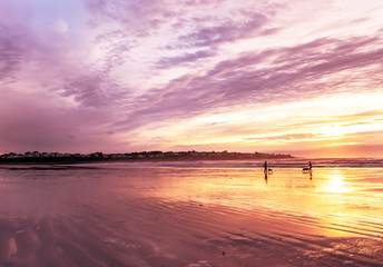 Poster - Early  morning on the Atlantic coast. Reflection of the dawn sky in the water on the sand. USA. Maine.