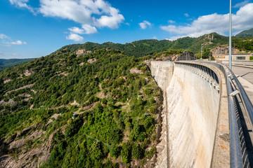 Baells reservoir marsh in Spain.