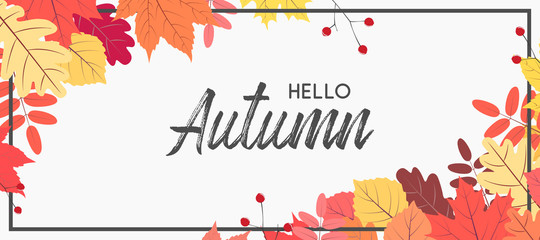 Fototapeta Hello autumn falling leaves. Autumnal foliage fall and poplar leaves. Autumn design. Templates for placards, banners, flyers, presentations, reports. obraz