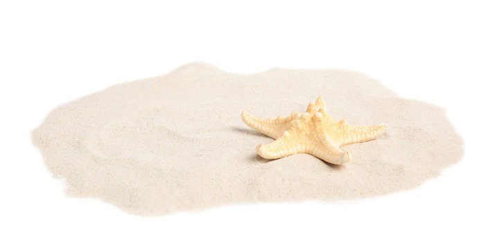Pile of beach sand with beautiful starfish on white background