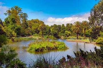 Botanical gardens in Melbourne, Australia in the Summer