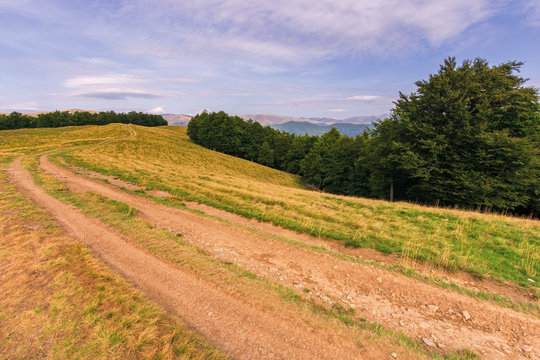 country road through meadow in mountains. wonderful summer scenery at sunset. purple clouds on the blue sky. beech trees along the hill. ridge in the distance
