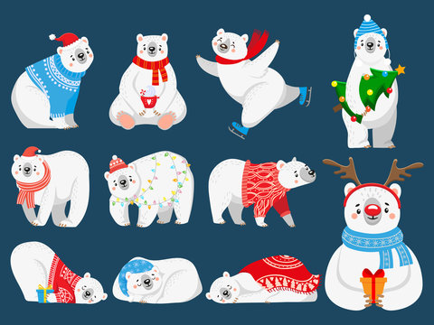 Christmas polar bears. Arctic bear with New Year gifts, happy snow animal in Merry Christmas sweater. 2020 bears mascot character, Xmas cartoon vector illustration set