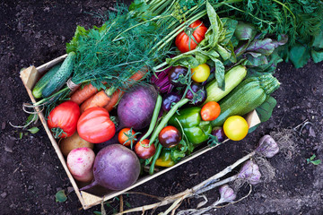 Variety of Fresh organic vegetables in the wooden box