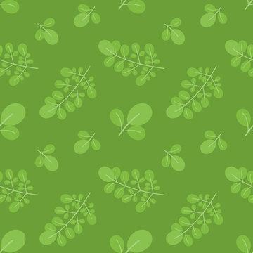 Green moringa oleifera leaves vector cartoon seamless pattern background.