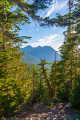 Fototapete - Scenic view of another mountain in Mt. Rainier National Park.