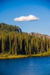 Fototapete - Overlooking a pristine blue lake with and pine trees with a lone puffy white cloud on a blue sky day at Mt. Rainier National Park.