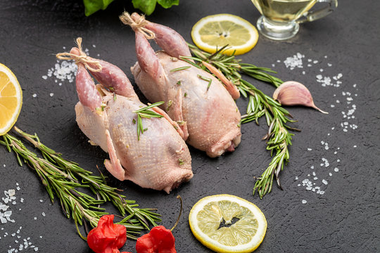 Fresh raw meat quails with herbs and greens rosemary, basil ready for cooking on close-up. Uncooked quail