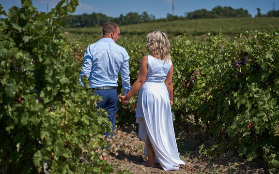 couple in love among the vineyards