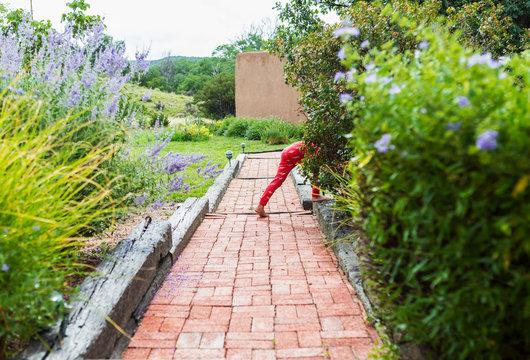 5 year old boy walking on narrow brick path between garden