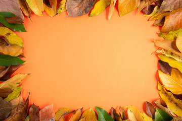 Autumn composition. Frame of Fallen yellow leaves on orange background. Flat lay, top view copy space.