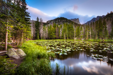 A picture of Nymph Lake in Rocky Mountain National Park, Colorado. The sun is setting and the are lily-pads floating atop the water.