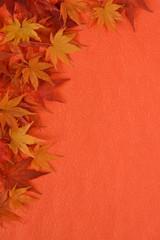 紅葉 和紙背景