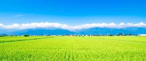 夏の田園風景 安曇野 ワイド