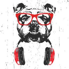 Portrait of English Bulldog with glasses and headphones. Hand-drawn illustration. T-shirt design. Vector