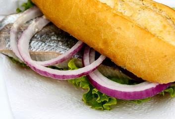 Bread roll with fish (Matjes broetchen) – Schleswig-Holstein, Germany