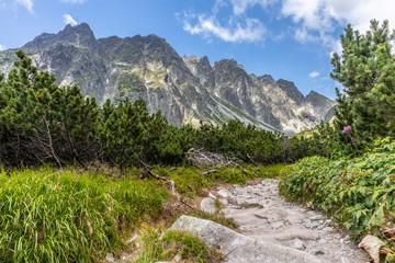 Kamienny szlak w Tarach