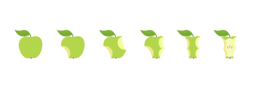 Green apple fruit bite stage set. From whole to apple core. Bitten and eaten. Animation progression. Flat vector illustration.