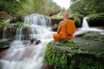 Recess Fitting Forest river Buddha monk practice meditation at beautiful waterfall