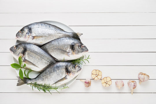Four Fresh Royal Dorades on dish on white wooden background. Healthy food concept. Top view, copy space. Mediterranean seafood concept
