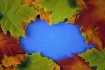 autumn leaves on blue background