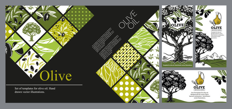 Olive tree, olives and jug with oil. Hand drawn vector illustrations.