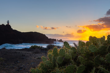 Punta de Teno cape at sunset in Tenerife island, Spain