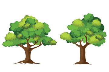 Tree collection isolated on white background. Cartoon of trees.