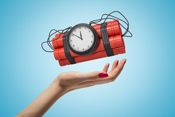 Female hand holding red dynamite stick time bomb on blue background