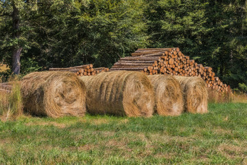 Beaten wood and hay bales