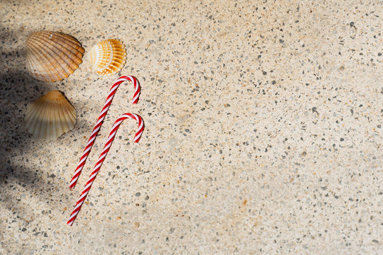 candy canes and seashells under palm shadows. Merry Christmas and Happy New Year travel destinations to hot countries. Copy space. top view.