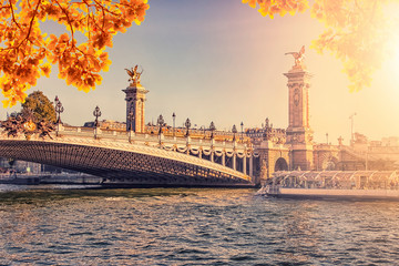Wall Mural - Autumn evening in Paris with the Alexandre III bridge
