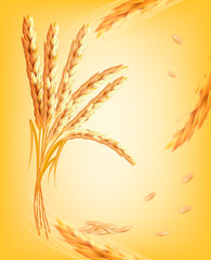 Nature background with ears of wheat. Vector.