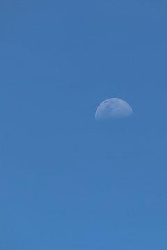moon in dusk sky