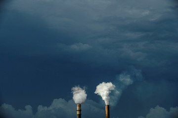 Steam rises out of chimneys at the Big Bend Power Station owned and operated by Tech Energy in Apollo Beach, Florida