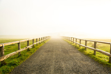 希望への道 Fotomurales