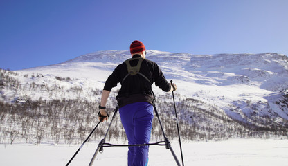 Cross country skier with pulka (sled) in national park Sarek, Swedish Lapland. Sweden.