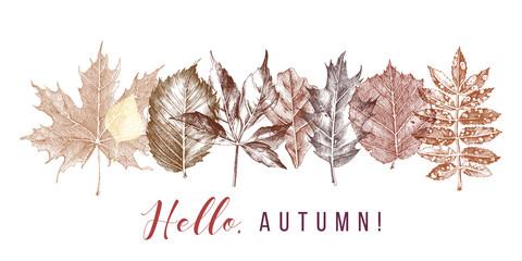 Autumn background in retro style. Hand drawn design