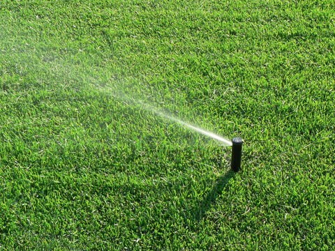Sprinklers automatic watering grass on a hot summer day. Savings of water from sprinkler irrigation system with adjustable head. Automatic equipment for irrigation and maintenance of lawns, gardening.
