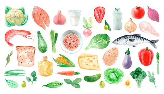 Watercolor hand-drawn set of natural food. Organic vegetables, seafood, dairy and meat.