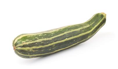 Fresh giant striped zucchini