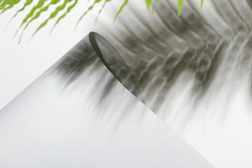 Folded paper and fern leaf