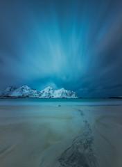 Wild nature in Lofoten Islands