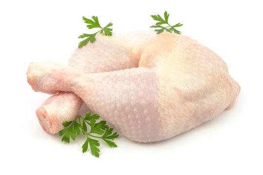udko z kurczaka surowe