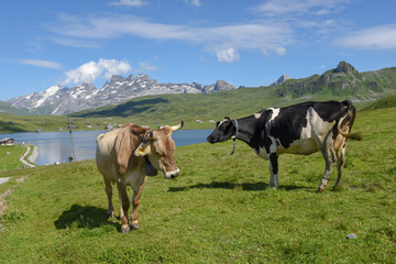 Mountain village of Melchsee-Frutt in the Swiss alps