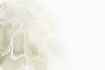 Sympathy Background Photos Royalty Free Images Graphics